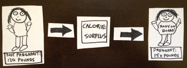 preg-calories-edited